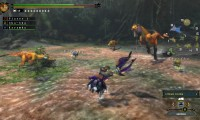 monster-hunter-3-ultimate-wii-u-screenshot-5