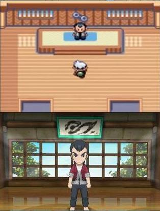Pokemon Ruby Sapphire comparison 27
