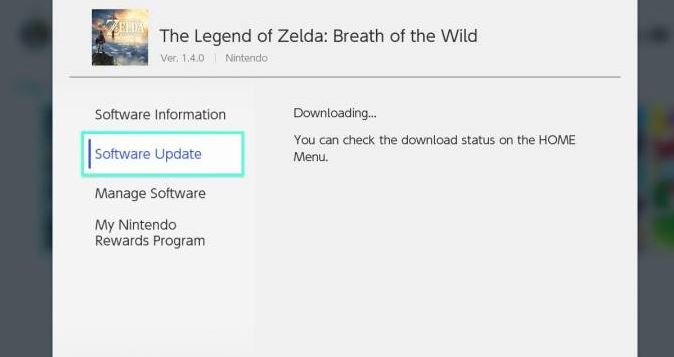 New Breath of the Wild update is causing problems for some players